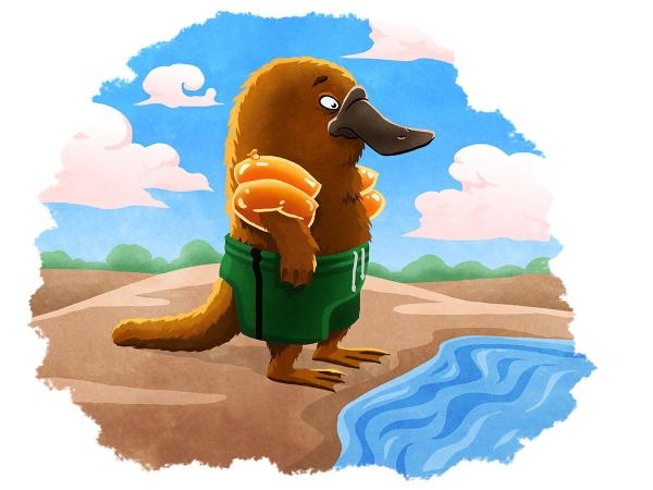 Hesitant Platypus
